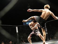 مباريات UFC في أبوظبي 2020
